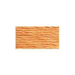 117-3825 Pale Pumpkin - Six Strand DMC Cotton Floss