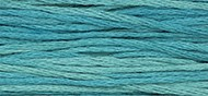 2135 Turquoise Artichoke - Weeks 6-Strand Embroidery Floss